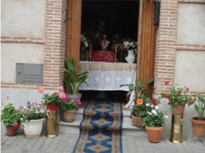 Corpus 2009